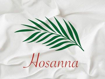 operation_hosanna.jpg