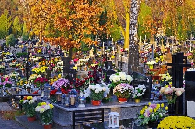 autumn-3853469_640.jpg